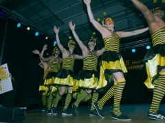 maenner-ballett-treffen_20130421_1512812921